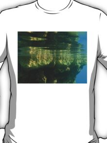Above And Below Water T-Shirt