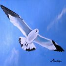 Blue Gull by JanetAnn
