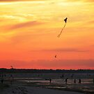 Fly By Night - Sorrento front beach, Victoria by Deanna Roberts Think in Pictures