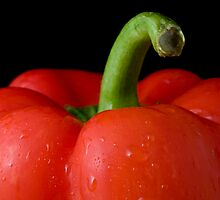 bell pepper by jude walton