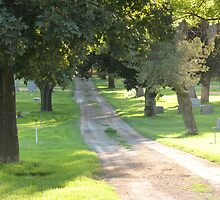 Heaven's Path by CassPics