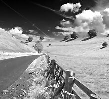 Black and white Yorkshire by Robert Gipson
