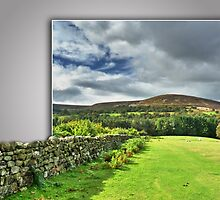 Out of bounds, Yorkshire stone wall by Robert Gipson