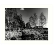 Strensall common in the black and white Art Print