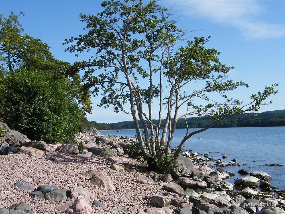Loch Ness by pat oubridge