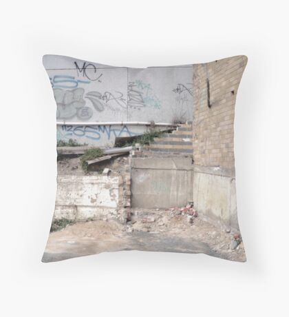 The Beautiful Ugly. Throw Pillow