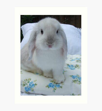 Baby bunny rabbit-Whisper Art Print