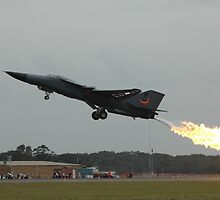 F111 - Go-Around + Dump & Burn 2010 by muz2142