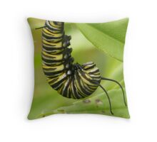 Planning to Cocoon Throw Pillow