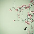Free as a Bird by Cassia
