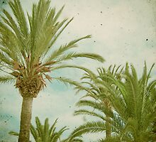 Palm Trees by Cassia