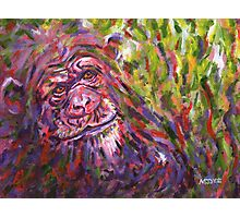 Chimpanzee endangered animal painting Photographic Print
