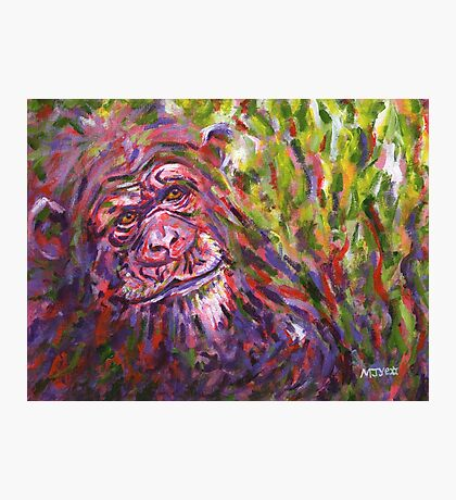 Acrylic painting, Chimpanzee endangered animal art Photographic Print