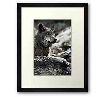 Relaxed hunter Framed Print