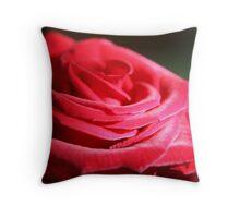 Red velvet rose by morning light  Throw Pillow