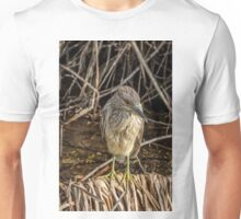 Juvenile Black Crowned Night Heron Unisex T-Shirt