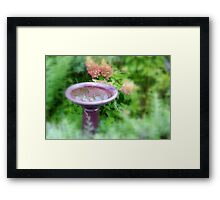 Small Reflection... Framed Print