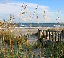 Wrightsville Beach, NC by EddaM