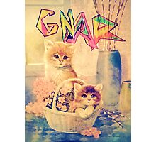 Gnar Kittens Photographic Print