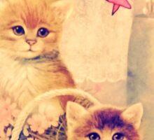 Gnar Kittens Sticker