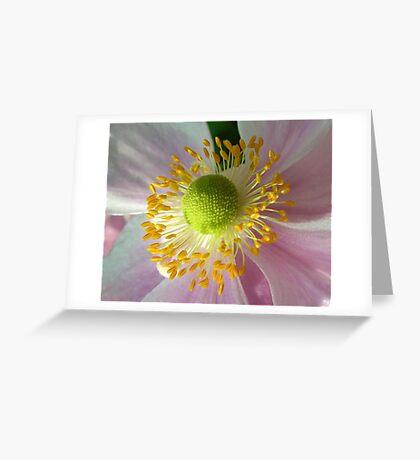 japonese anemone Greeting Card