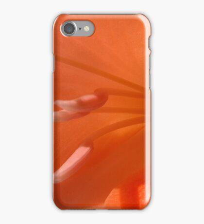 Peach Gladiolus iPhone Case/Skin