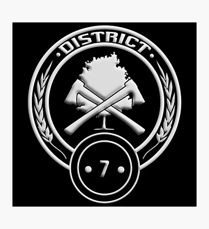 District 7 - Lumber Photographic Print