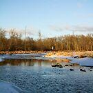Winter River by AbigailJoy