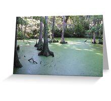 Swamp Land Greeting Card