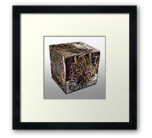 Leopard Cube Framed Print