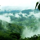 Coffee Land in the clouds, Puriscal, Costa Rica by Guy Tschiderer