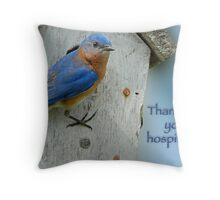 Thanks for your hospitality! Throw Pillow