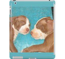 The Big Soft Blue Pillow iPad Case/Skin