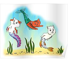 Sea cats Poster