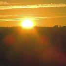 cold Sun Rise by wldman68
