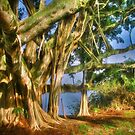 Under The Banyan Tree by Noble Upchurch