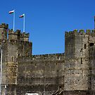 Caernarvon Castle by Trevor Kersley