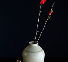 Vases With Japonica by prbimages