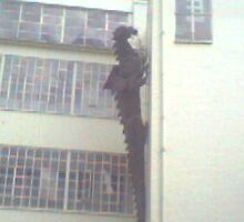 the dragon at the custard factory by jan01125679