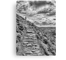 Path to the sky Canvas Print