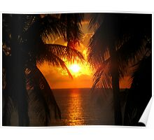 Palm Tree Silhouette, Sunset Poster