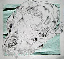 Crystals & Skulls by Maura Hartzman