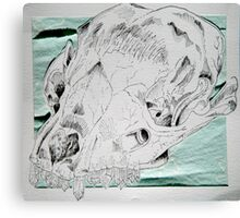 Crystals & Skulls Canvas Print