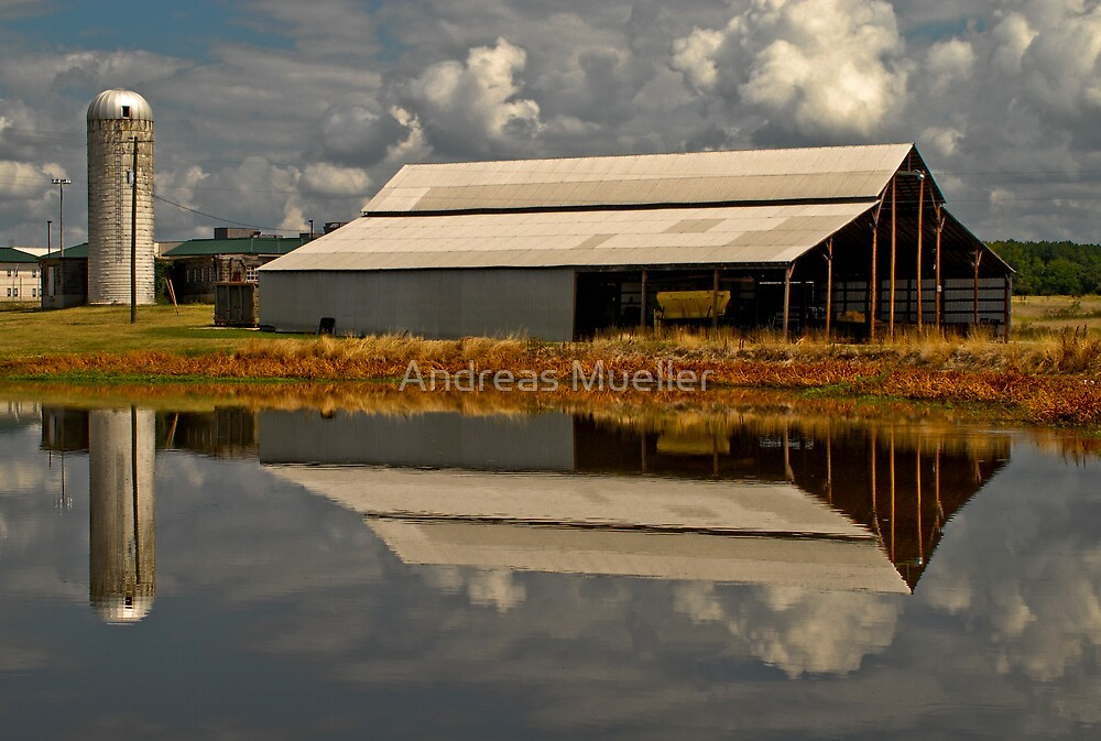 Reflecting by Andreas Mueller