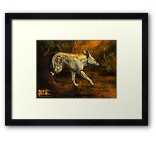 Through the Ghost Framed Print