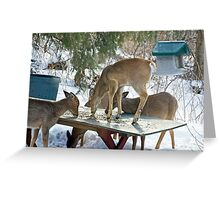 IT'S RUDE TO PUT YOUR FEET IN YOUR FOOD! Greeting Card