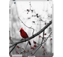 Lone Cardinal iPad Case/Skin