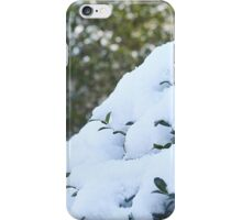 Life From Snow  iPhone Case/Skin