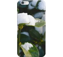 Life From Snow 2  iPhone Case/Skin