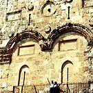 Eastern Gate to the Temple Mount by Laurie Puglia